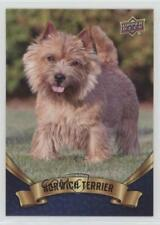 2018 Upper Deck Canine Collection Blue Norwich Terrier #137 ob6