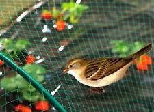 Anti Bird Defence Net 4m x 10m Pond Plants Crops Garden Fruit Veg Protection 8x8