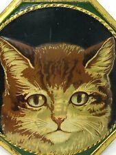 Tôle & Plaque & Lithographiée & Chat & Animalerie & Publicitaire & Vers 1900