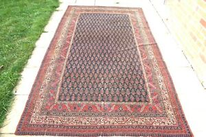 Antique Persiann Caucasian Bidjar Bijar hand knotted lambs wool 300 x 170 cm