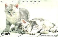 RARE / CARTE TELEPHONIQUE JAPON - PETITS CHATS CATS / PHONECARD JAPAN