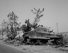 New 8x10 Photo - Destroyed Sherman tank and German 88mm gun - Sicily Italy 1943