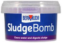 Bermuda Sludge Bombs Pond Crystal Clear Water Breaks Down Waste Healthy Fish Koi