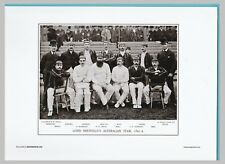 CRICKET  -  UNMOUNTED CRICKET TEAM PRINT- LORD SHEFFIELD'S - 1891-2