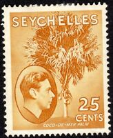Seychelles1938 brown-ochre 25c chalk-paper multi-script mint SG141
