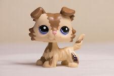 *Littlest Pet Shop* LPS #2210 Brown Cream Collie Puppy Dog w/ Blue Eyes