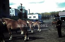 Original Slide, 1940's Red Border - Horses dressed for Show / Old Cars on Farm