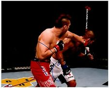 DAN HARDY Signed Autographed UFC MMA 8X10 PIC. D