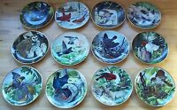 Complete Plate Set Lot of 12 THE NATIONAL AUDUBON SOCIETY Plates A.J. Rudisill