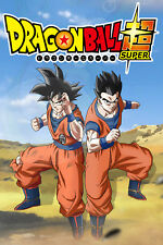 Dragon Ball Super Poster Goku and Gohan 12inches x 18inches Free Shipping