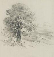 J.LANGE(*1817), Baumstudie, 19.Jhd., Bleistiftzeichnung