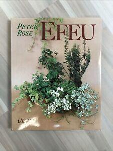 Rose, Peter Q. - Efeu Buch Zustand gut #902