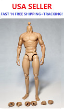 """ZC toys 1/6 scale Muscular Body for 12"""" male figure Wolverine Head play"""
