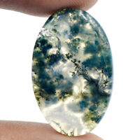 Cts. 18.40 Natural Designer Moss Agate Oval Shape Cabochon Cab Gemstone