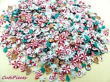 Fimo Clay Xmas Santa Snowman Gingerbread Man Snowflake Cane Tiny Mix 3D Nail Art