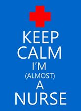 Keep Calm And Nurse STICKER DECAL VINYL BUMPER CAR Wall Locker Notebook