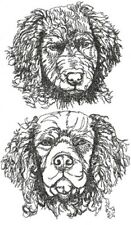 Curly Coated Retriever Dog Breed Graphic Set Of 2 Hand Towels Embroidered