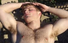 Shirtless Male Handsome Hunk Hairy Chest Arm Pits Laying Back PHOTO 4X6 C1083