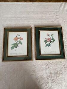 Vintage Framed prints by P J Redoute Roses