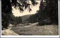 Friedrichroda DDR Postkarte 1962 gelaufen nach Hohenstein Partie im Kühlen Tal