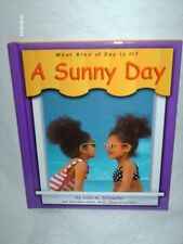 A Sunny Day (What Kind of Day is It?)