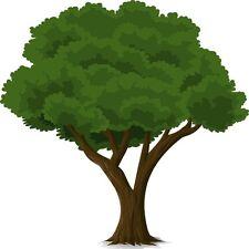 30 Custom Nice Tree Personalized Address Labels