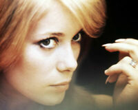 235151 Catherine Deneuve wonderful close up WALL PRINT POSTER CA