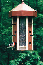 Draco Squirrel-Proof Birdfeeder - Large Capacity - Made in USA