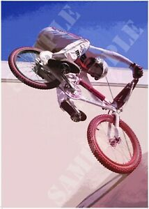 Reproduction BMX PK Ripper Stylised Poster A4 A3 A2 Print Vintage 1980s Bike rad