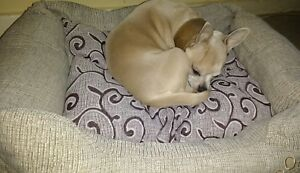 Soft PET BED FAWN BROWN SMALL X/S washable FABRIC DOG CAT PUPPY paw motif