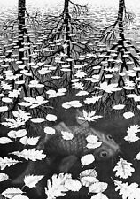 Escher # 10 cm 35x50 Poster Stampa Grafica Printing Digital Fine Art papiarte