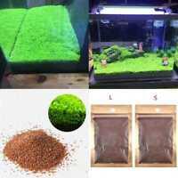 Aquarium Plant Seeds Aquatic Double Leaf Carpet Water Grass Fish Tank A