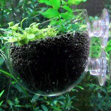 Fish Tank Aquarium Aquatic Glass Cup Crystal Red Shrimp Holder With. nice