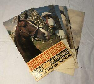 VINTAGE 1968 HALLMARK PARADE OF HORSES CALENDAR WITH 12 TEAR-OFF POSTCARDS