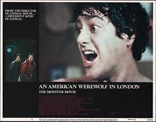 AN AMERICAN WEREWOLF IN LONDON orig lobby card DAVID NAUGHTON 11x14 movie poster