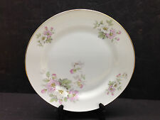 "Bavaria Tirschenreuth Apple Blossom 10"" Dinner Plate Germany Pasco 246 China"