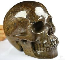 """LIFESIZED 6.7"""" SHIMMERING BRONZ Carved Crystal Skull, Realistic, Crystal Healing"""