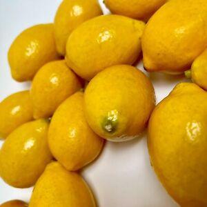 Set of 19 Lifelike Faux Lemons Bowl Filler Deco Fruit Realistic Plastic