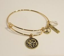 Gold Plated 2 Sided Aries Zodiac Astrology Wire Bangle Bracelet With Clasp