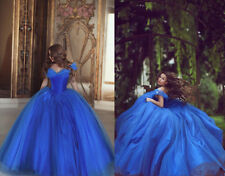 Cinderella Royal Blue Quinceanera Dresses Ball Gown with Butterflies Lace up