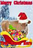 Cow Santa Sleigh nnc198 Christmas Xmas Card A5 Personalised Greetings