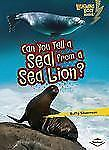 Can You Tell a Seal from a Sea Lion? (Lightning Bolt Books: Animal Look-Alikes)