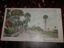 DAYTONA FL - RARE 1902 POSTCARD - BEACH STREET - Detroit Pub. Co.