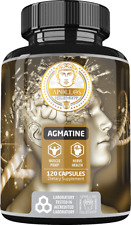 Apollo's Agmatine Sulfate 500 mg 120 Capsules - Improve Strength