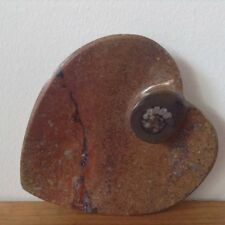 Ammonite Fossil Stone Polished Heart Shaped Plate Dish - Morocco