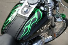 Custom Designed Flame Graphics kit fits Harley Davidson Softail Standard FXSTI