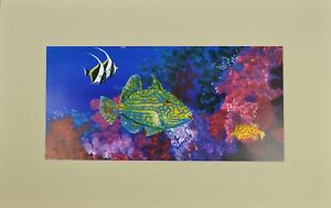 "Coral Reef Scene Matted Print 12"" x 19"", Australian Marine Animals"