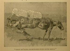 1897 A SHORTHORN'S KICKIN' PRINT BY FREDERIC REMINGTON CATTLE HISTORY TEXAS