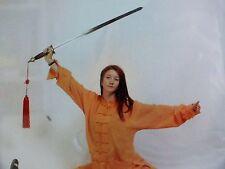 DRAGO cinese MW LION Tai chi Taiji arti marziali telescopic Esercizio Attrezzature