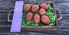 9 + 1 Extra  APA Standard, Blue, and Splash Wheaten Marans Hatching Eggs